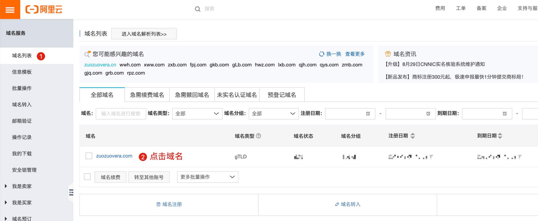 域名DNS服务商设置.jpg